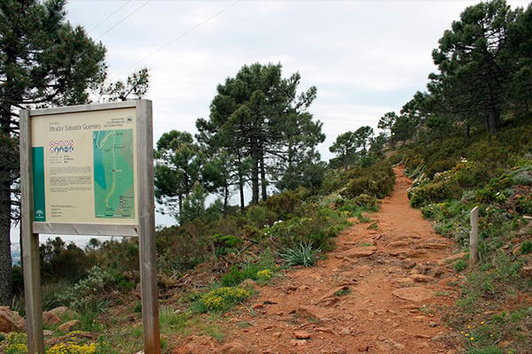 Reales Sierra Bermeja Málaga